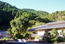 大滝七滝温泉 お抹茶風呂の宿 つりばし荘