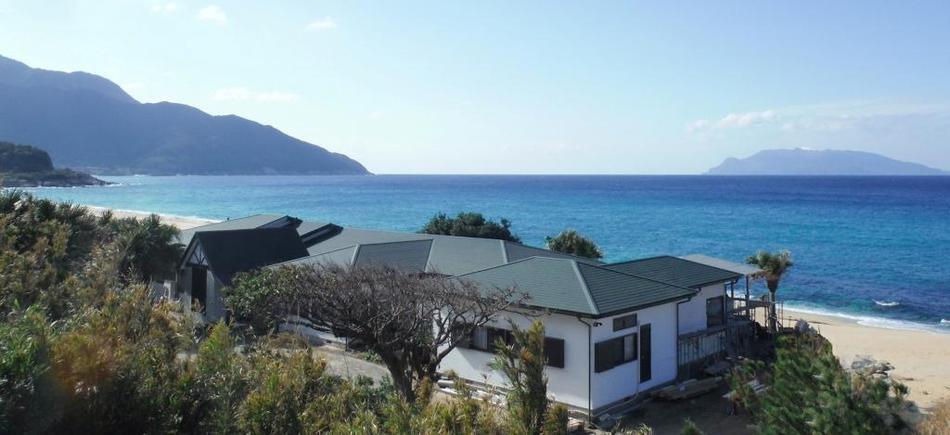 海亀がくる宿 マリンブルー屋久島 楽天トラベル提供写真