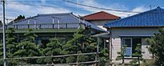 民宿松林館